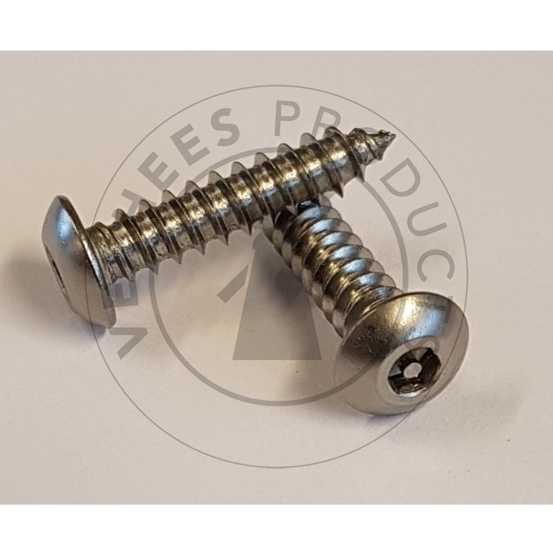 Veiligheidsschroeven Bolkop met binnenzeskant en pin 4,2×19 mm Roestvaststaal (RVS) (p/100st.)